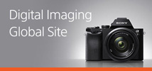 Digital Imaging Global Site